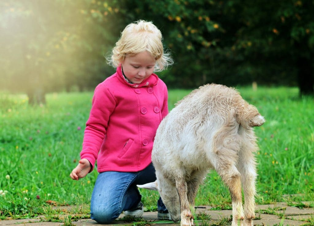 How To Teach Children To Be Kind