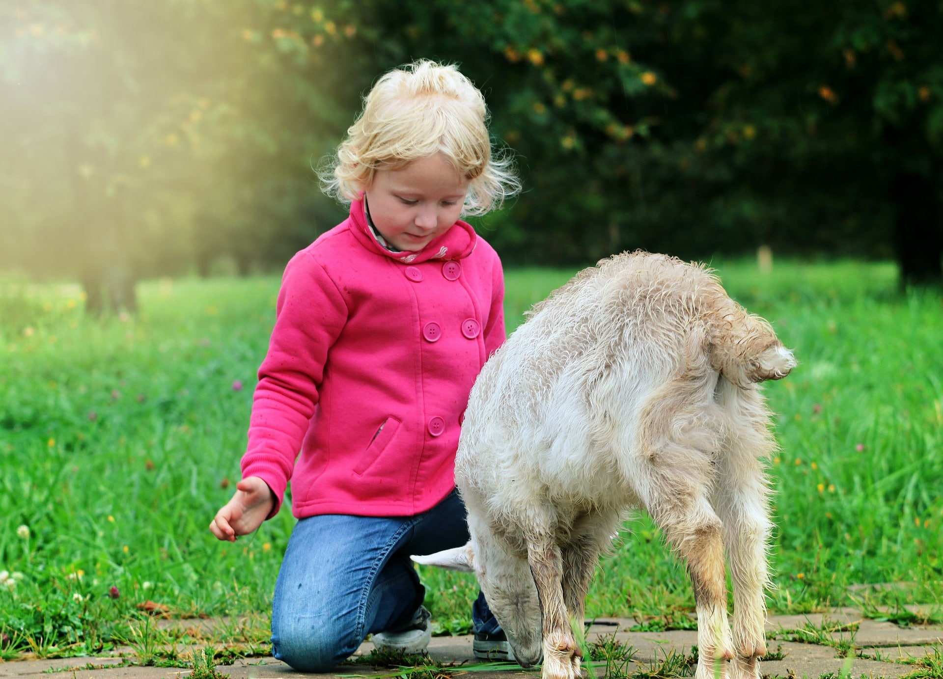 Parenting tips on how to teach kindness to kids