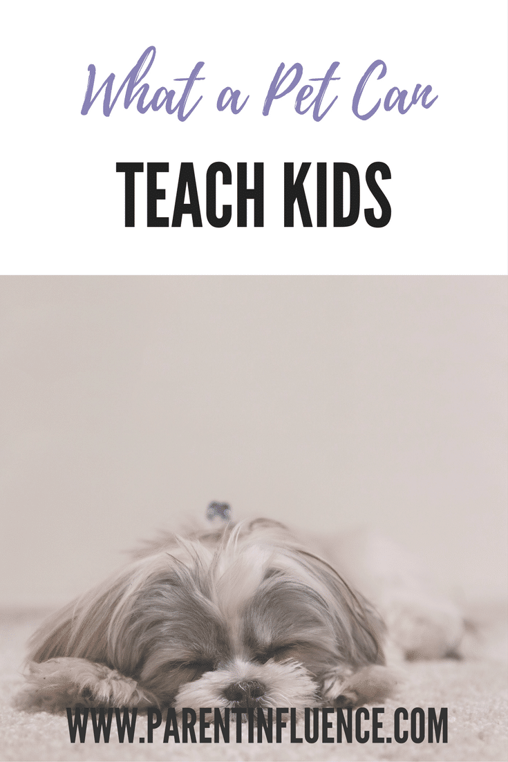 What A Pet Can Teach Your Kids