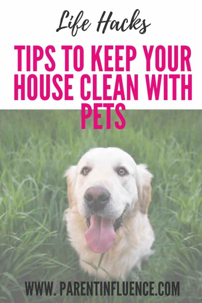 Tips to Keep Your House Clean with Pets