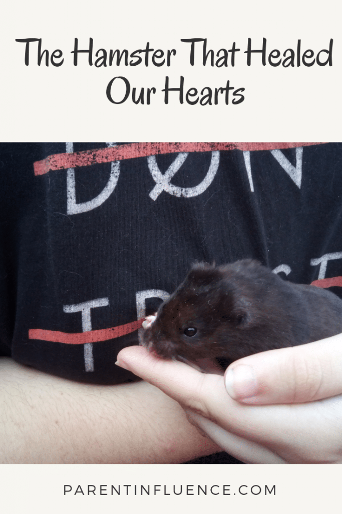 The Hamster That Healed Our Hearts